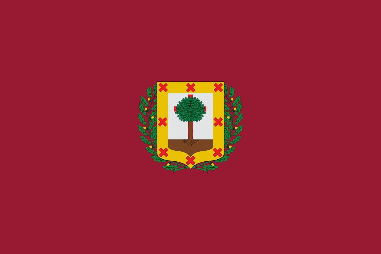 Флаг провинции Бискайя  (Vizcaya)