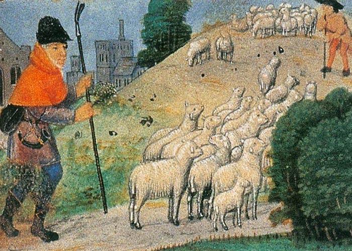 Сельское хозяйство �спании в первой половине XVI века