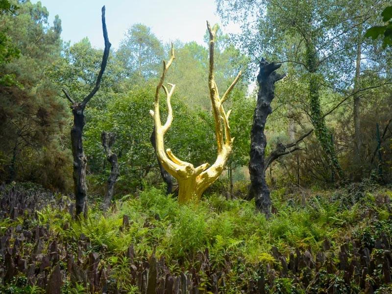 Широколиственные леса �спании