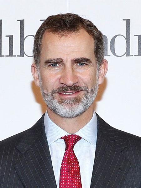 Филипп VI (исп. Felipe VI de Borbón y Grecia) — король �спании с 19 июня 2014 года