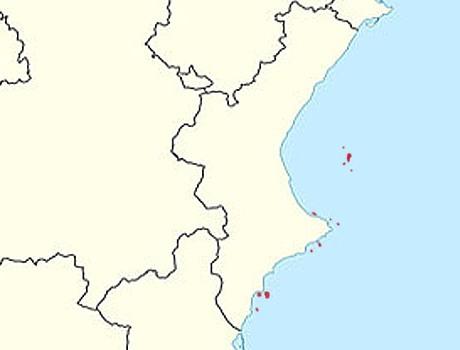 Прибрежные острова Валенсии