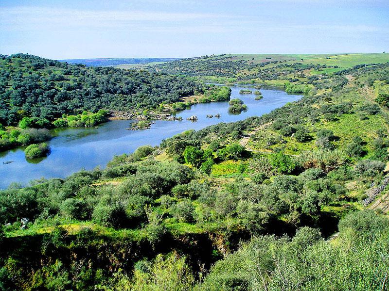 Река Гвадиана (Guadiana) в нижнем течении