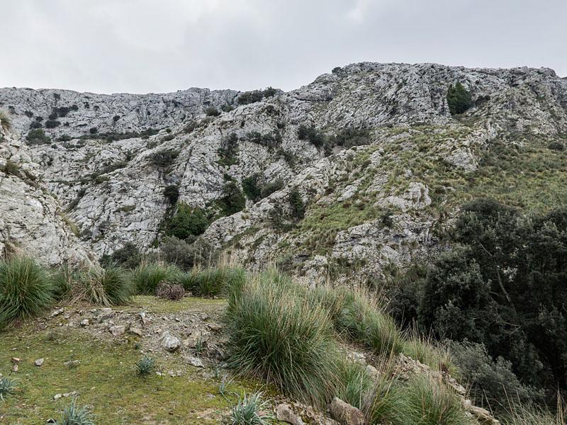 Русло пересыхающего ручья на острове Мальорка